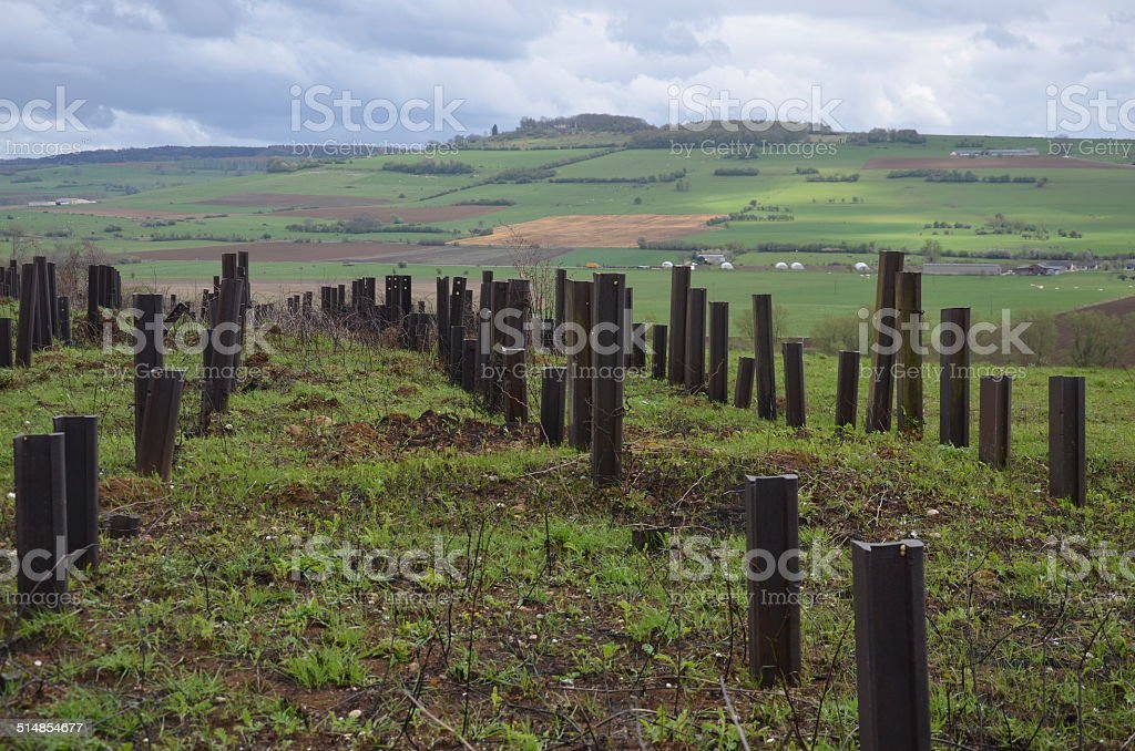 Maginot Line, France stock photo
