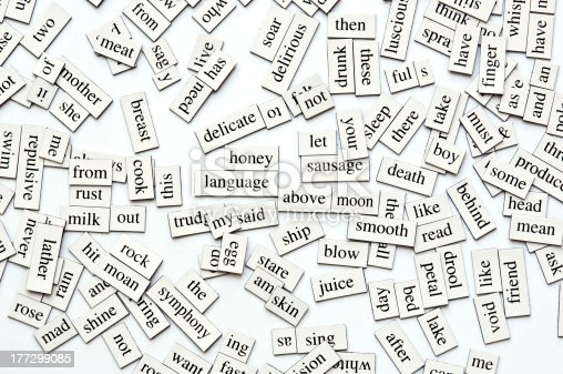 Random collection of  different words and word-forms on magnetic tiles