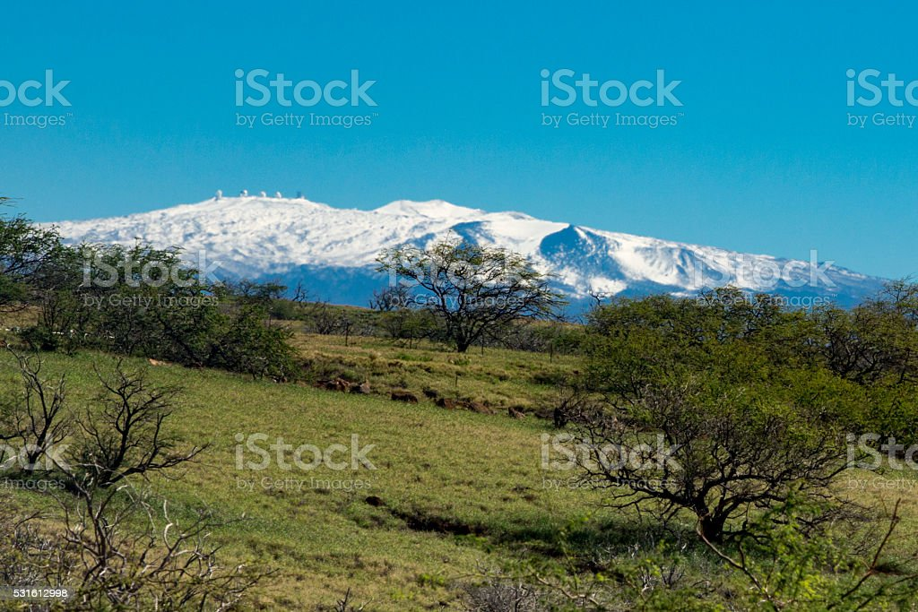 Magnicent and Snow Capped Mauna Kea In the Distance stock photo