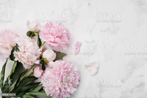 Magnificent bouquet of pink peony flowers on white stone background picture id806870474?b=1&k=6&m=806870474&s=612x612&h=zn2on81ukxb 0nfx32bwyys7driehco3ky8wamlrlhu=