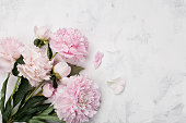 Magnificent bouquet of pink peony flowers on white stone background. Flat lay. Copy space for design and text.