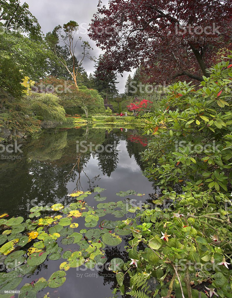 Magnificent garden. royalty-free stock photo