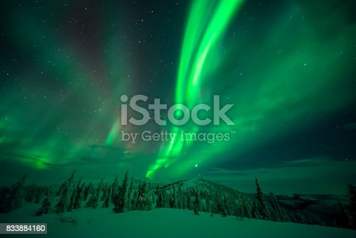 istock Magnificent green Northern Lights swirling over Snowy landscape 833884160