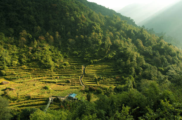 Magnificent Nepal view of the natural green hills. Annapurna basecamp trek. Nepal stock photo