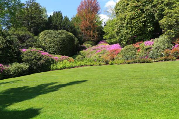 Prächtiger Park mit Blumenbeeten – Foto