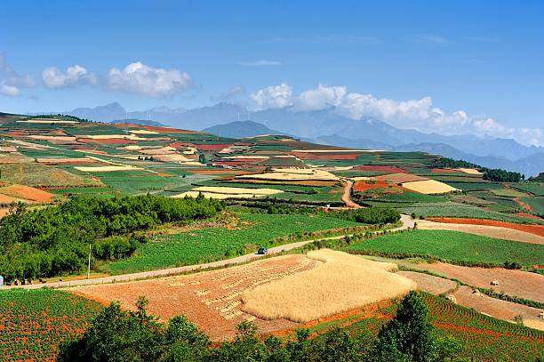 Magnificent Red land in China's Yunnan 014 – Foto