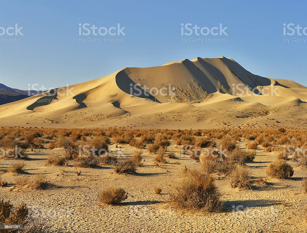 Magnificent sandy dune in desert royalty-free stock photo