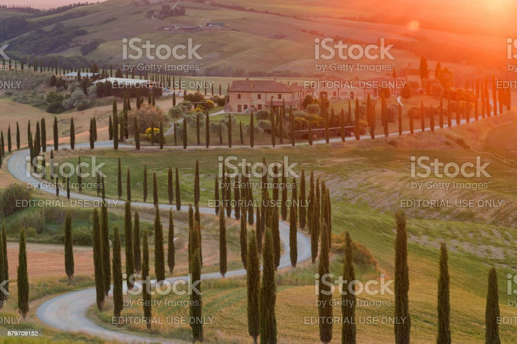 Magnificent spring landscape at sunset. stock photo