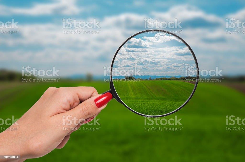 Lupe, die Vision der Natur zu korrigieren – Foto
