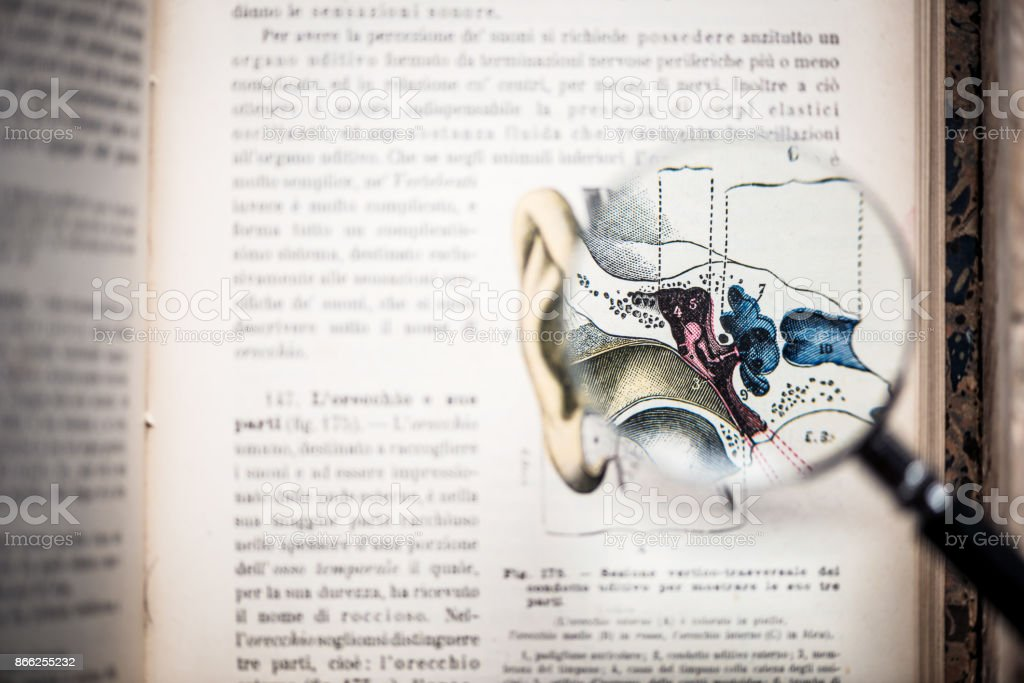 Magnifying glass on antique anatomy book: Ear stock photo