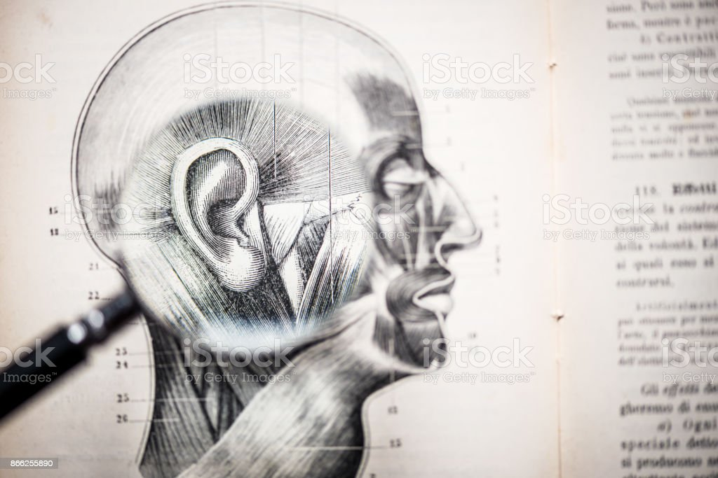 Magnifying Glass On Antique Anatomy Book Ear Stock Photo & More ...
