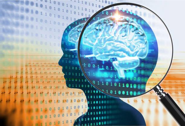 förstoringsglas på digitala hjärnan. 3d illustration - brain magnifying bildbanksfoton och bilder