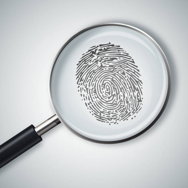 magnifying glass with finger print isolated on white background. - deductive stock pictures, royalty-free photos & images