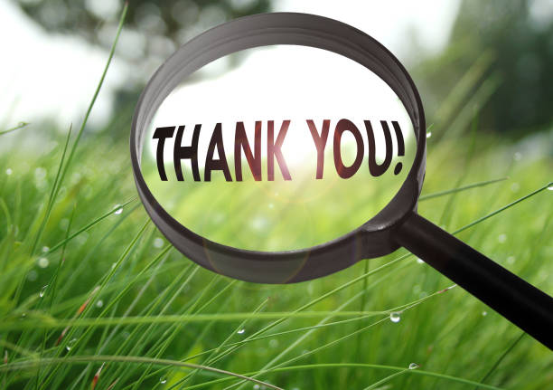 Magnifying glass with the word thank you on grass background stock photo