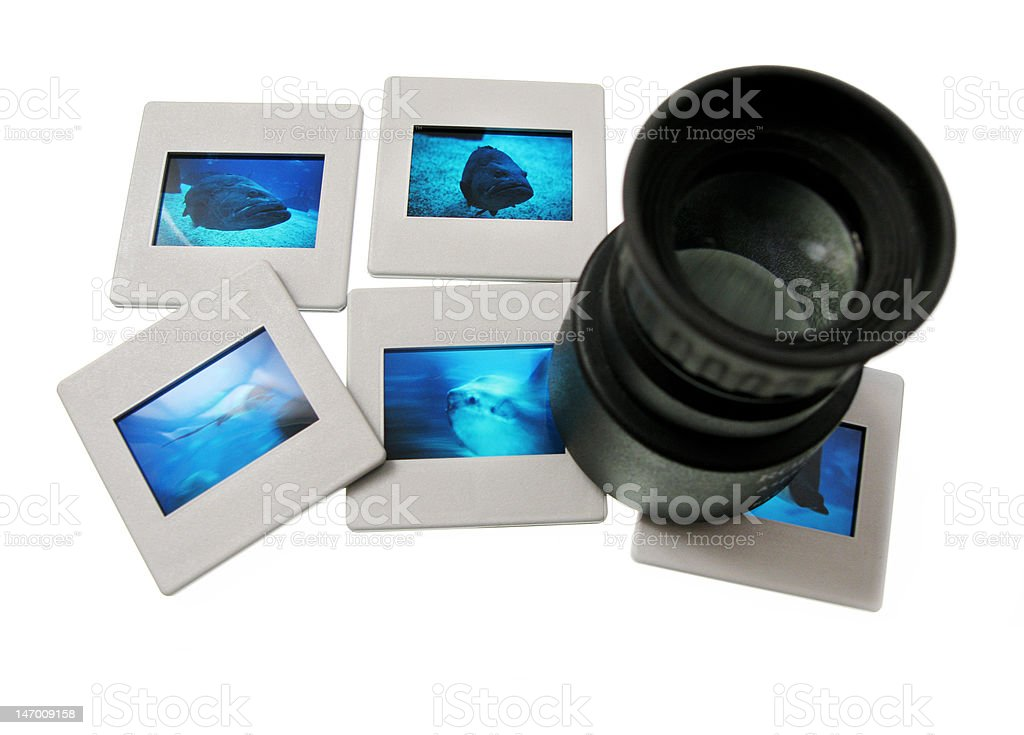 Magnifying Loupe with Slides royalty-free stock photo