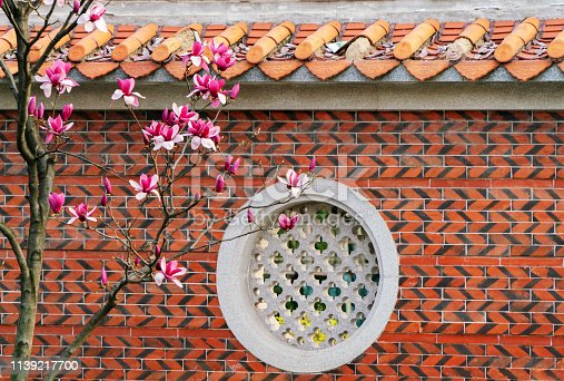 Magnolia blossom and Chinese rustic wall