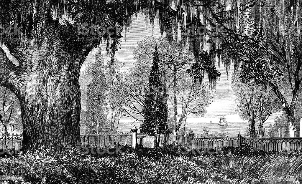 Magnolia Cemetery royalty-free stock photo