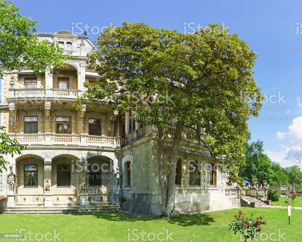 YALTA, CRIMEA, RUSSIA - JUNE 07.2016: Magnolia grandiflora at the front of Massandra Palace of Emperor Alexander III . stock photo