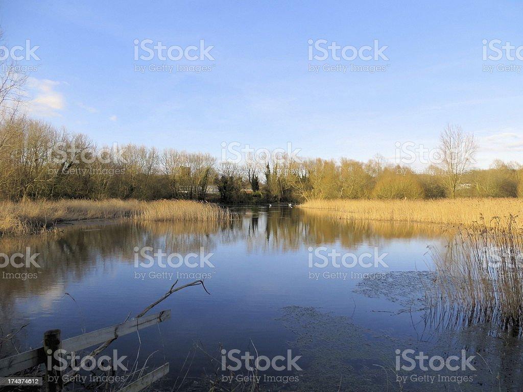 Magor Marsh stock photo