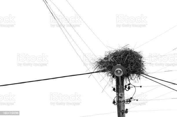 Free pole line stock photos and royalty free images, page