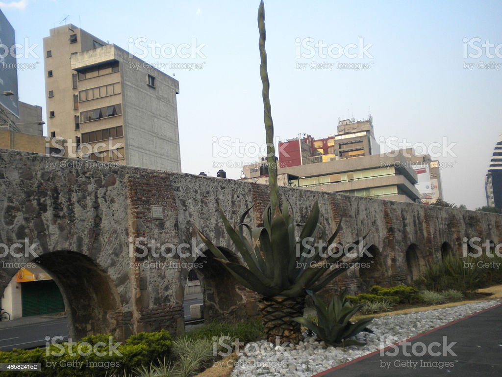 Maguey y arcos stock photo