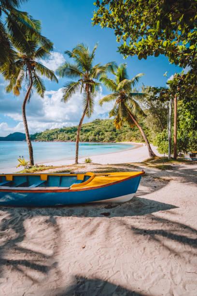 마헤 섬, 세이셸. 열대 해변의 화창한 날에 코코넛 야자수 아래 현지 선명한 컬러 보트 - 마헤 섬 뉴스 사진 이미지
