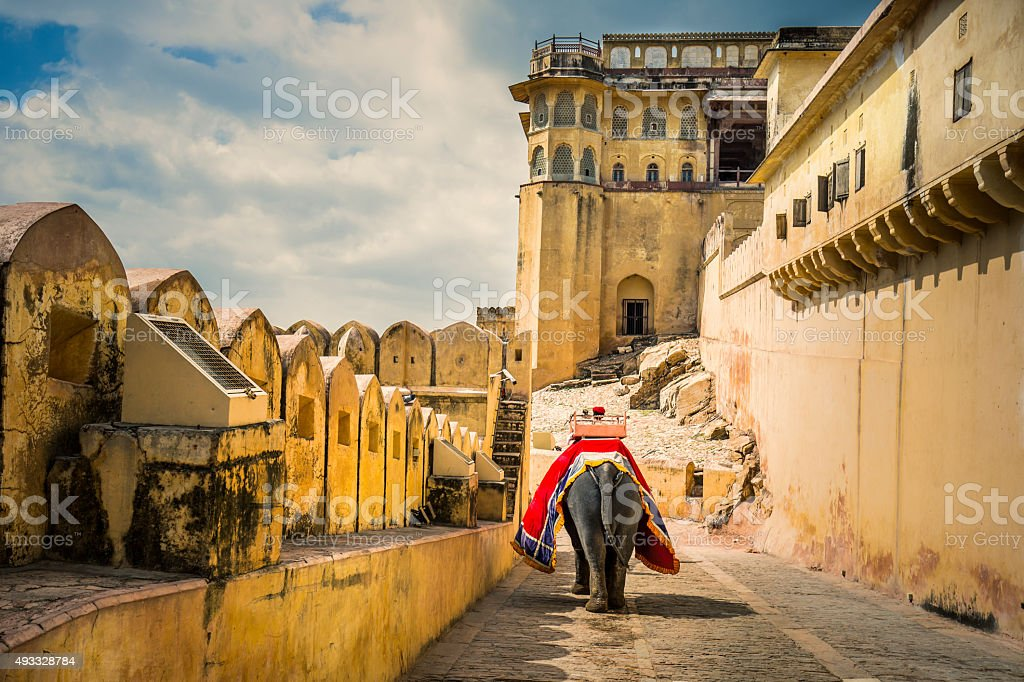 Mahout riding elephant in Amber fort stock photo