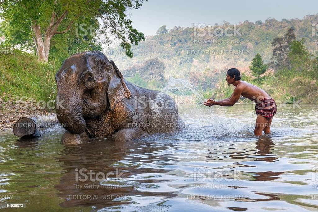 Mahout shows playing with an elephant stock photo