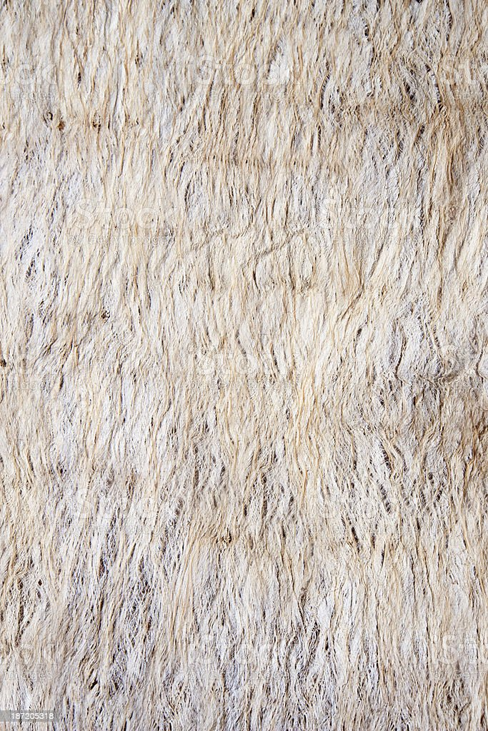 Mahute Texture royalty-free stock photo