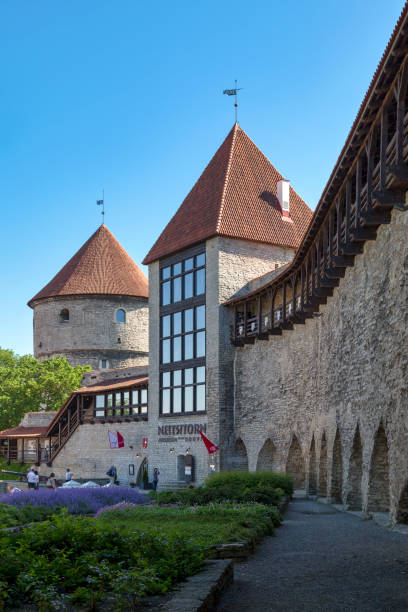 Maiden's Tower in Tallinn stock photo