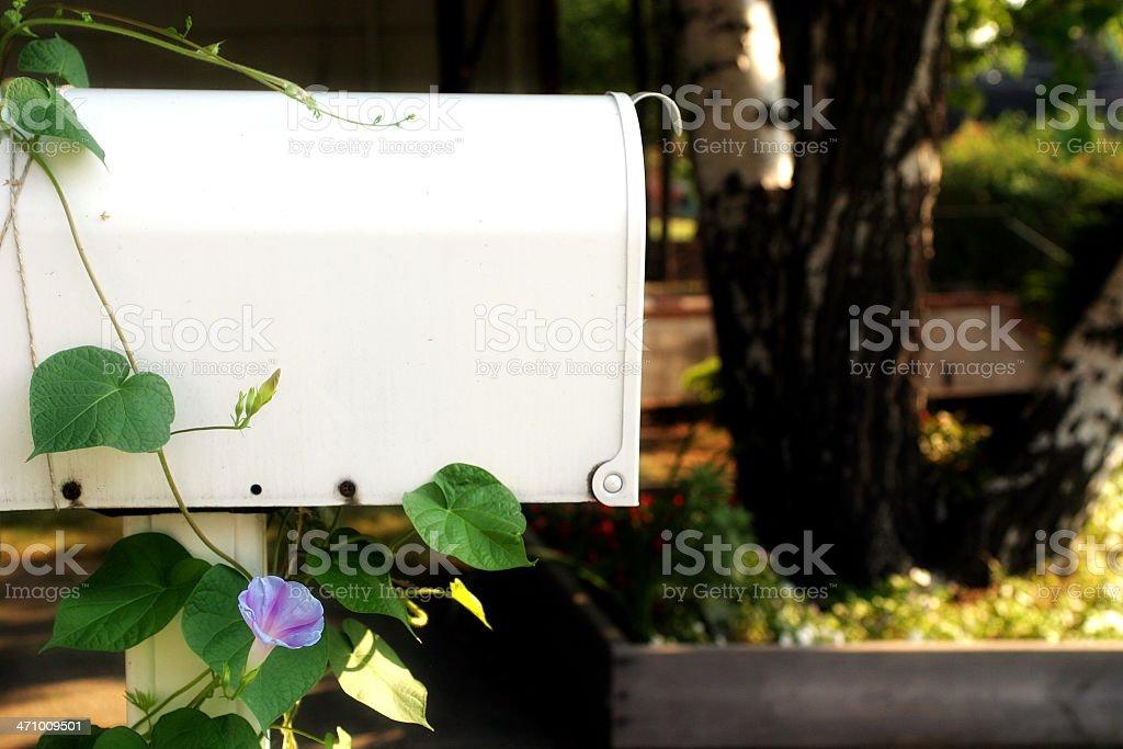 Mailbox and yard. royalty-free stock photo