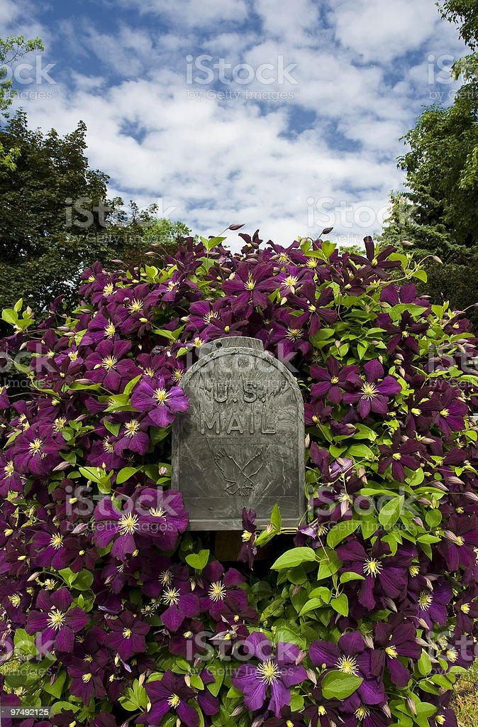 Mailbox with Clematis flowers and blue sky royalty-free stock photo