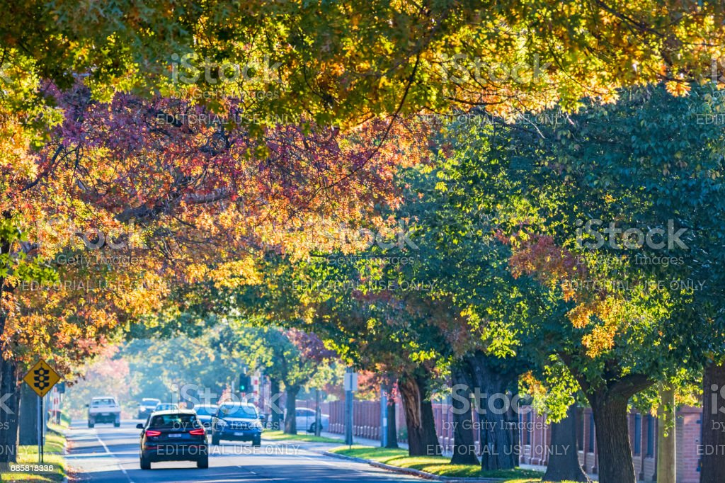 Main road in Melbourne's leafy eastern suburbs with Autumn colors stock photo