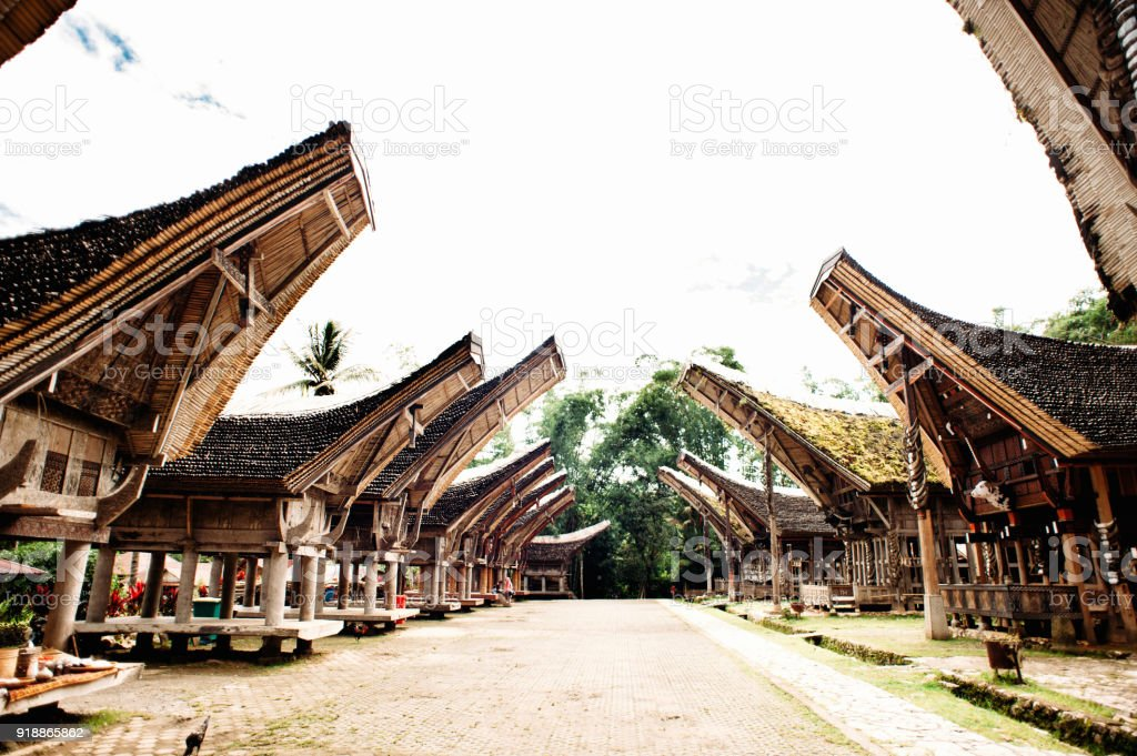 Main street of traditional Tana Toraja village with buffalo in the foreground , tongkonan houses and buildings. Kete Kesu, Rantepao, Sulawesi, Indonesia stock photo