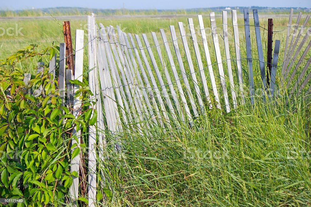 Maine Beach Fence stock photo
