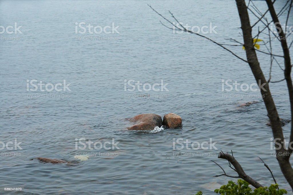 Maine rocas al mar foto de stock libre de derechos
