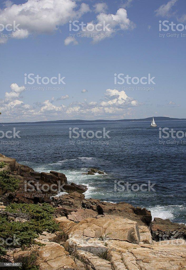 Maine Shore stock photo