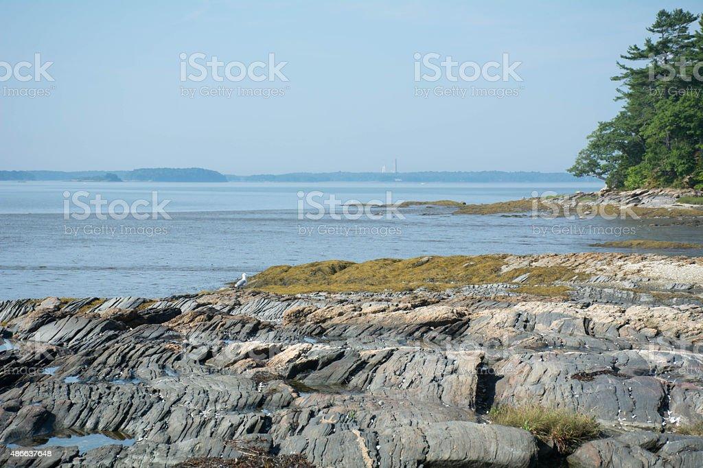 Maine tidal area 2 stock photo