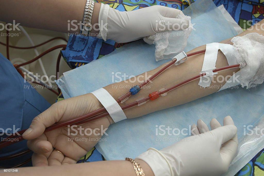 Maintenance hemodialysis stock photo