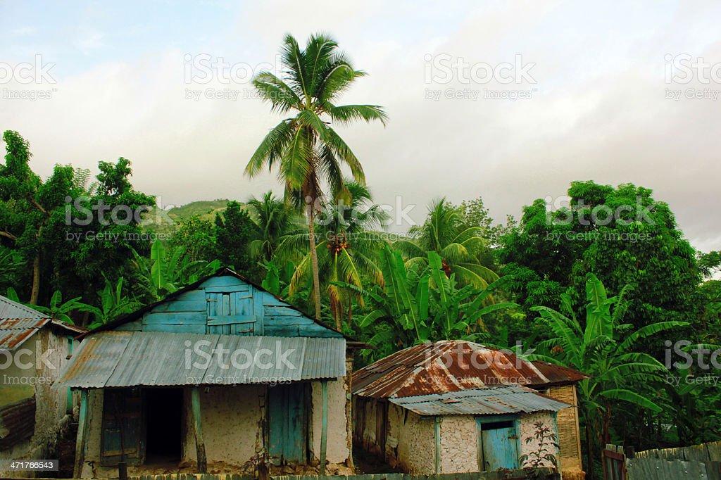 Maison de paysan haïtien et végétation stock photo