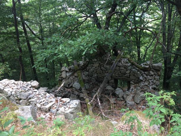 Maison en ruine en forêt et montagne Ardèche, France ruine stock pictures, royalty-free photos & images