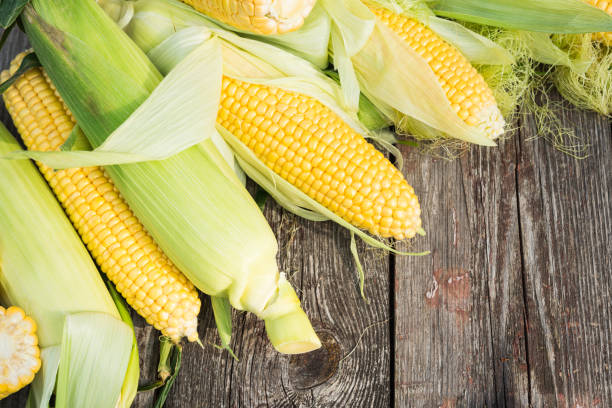 Maize. Fresh Corn on wooden table – Foto