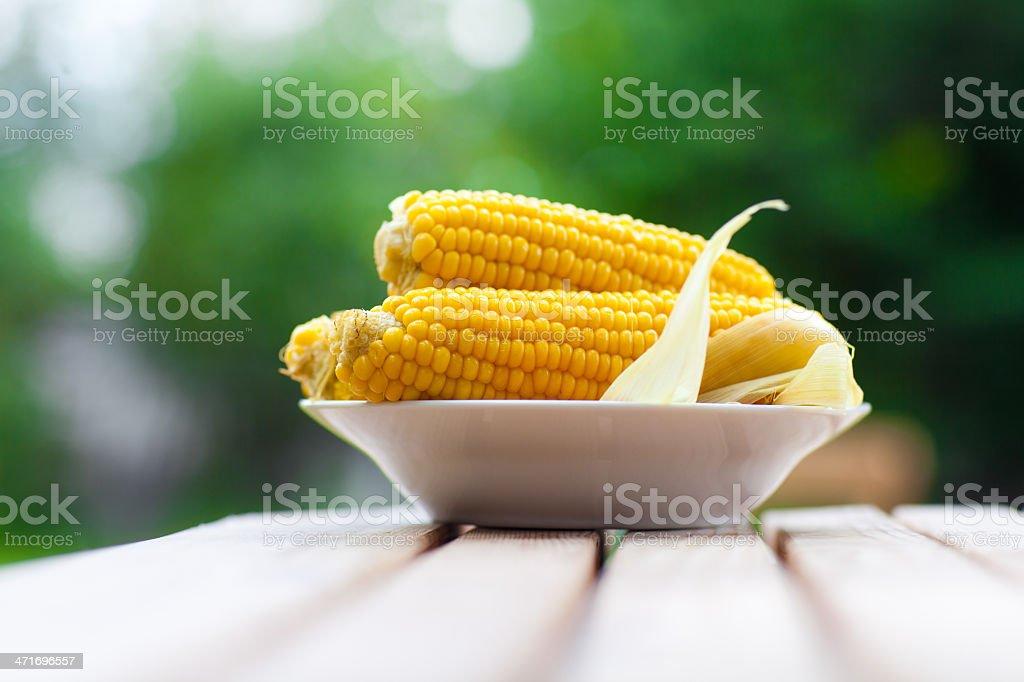 maizes auf dem Teller – Foto