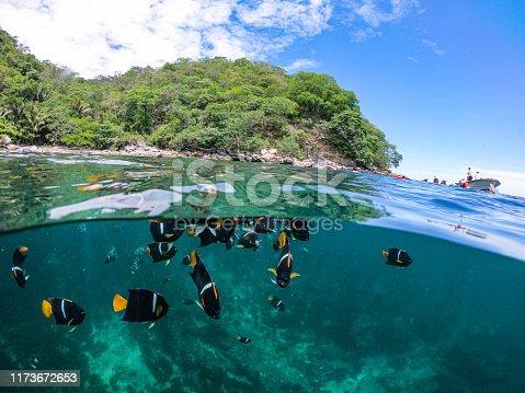 Actividades en playa Majahuitas, haciendo snorkeling y kayak