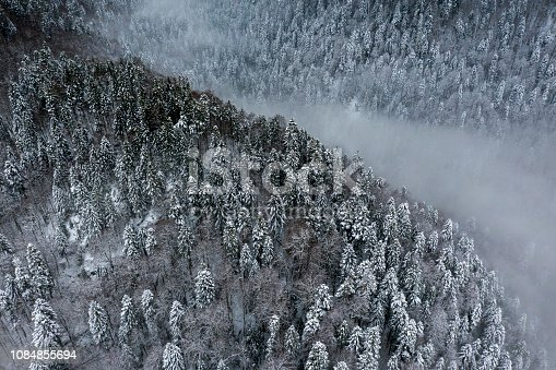 Beautiful aerial landscape view of a ravine filled with fog during wintertime high up in the mountains of Montenegro shot by a drone.