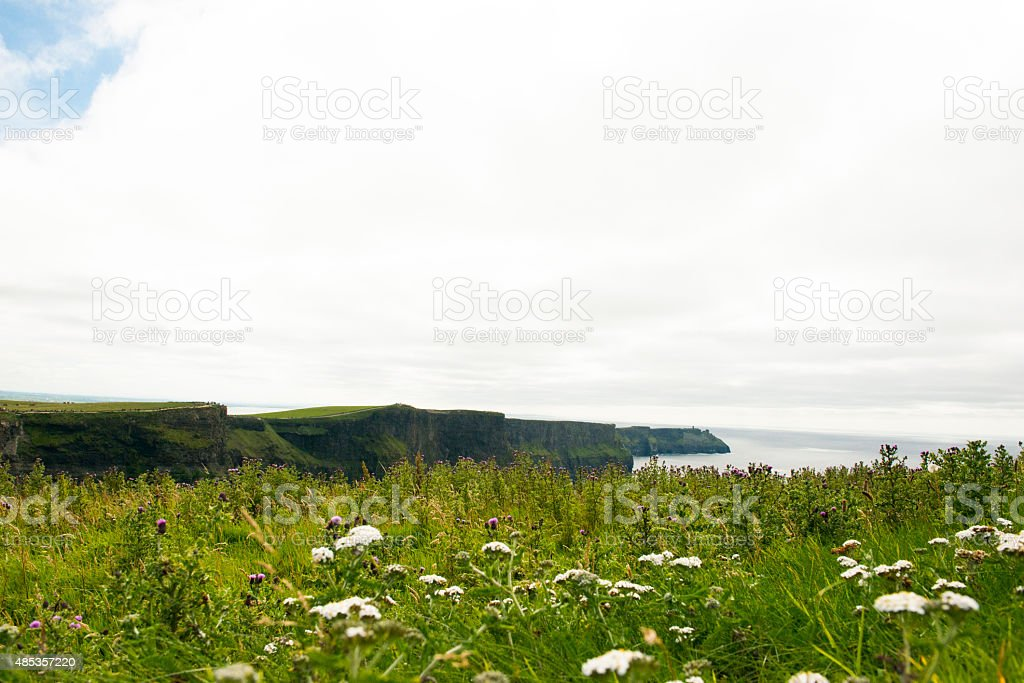 Majestic Cliffs of Moher, Clare, Ireland royalty-free stock photo