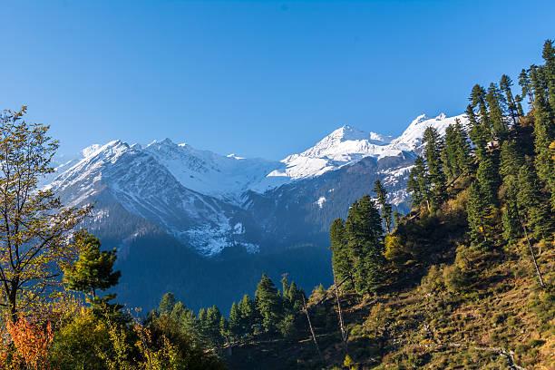 Majestic greenery and snow clad mountain of himalaya - foto de stock