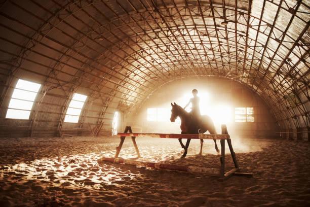 Majestätisches Bild der Pferdesilhouette mit Reiter auf Sonnenuntergang Hintergrund. Das Mädchen jockey auf dem Rücken eines Hengstes reitet in einem Hangar auf einem Bauernhof und springt über die Querlatte. Das Konzept des Reitens – Foto