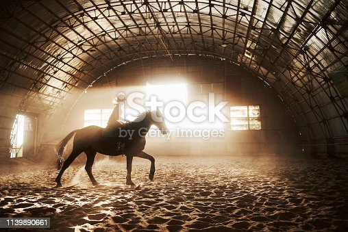 istock Majestic image of horse horse silhouette with rider on sunset background. The girl jockey on the back of a stallion rides in a hangar on a farm and jumps over the crossbar. The concept of riding 1139890661