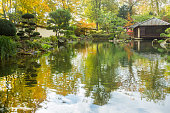 Majestic Japanese garden Pond and  authentic japanese tea house (which was delivered from Japan at beginning of 20-th century , Kaiseslautern
